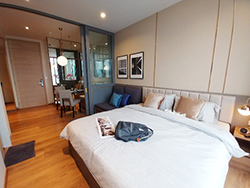 Park 24 - <strong>condo for rent in Phrom Phong</strong>